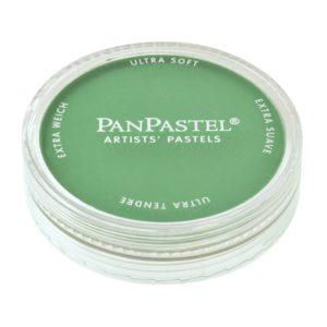 640.5 Permanent Green – PanPastel